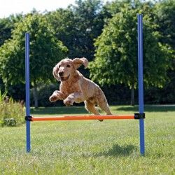 VALLAS PARA AGILITY, REGULABLES