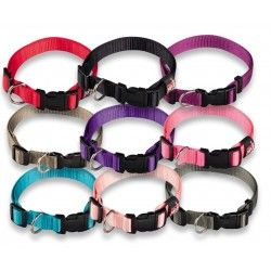 COLLAR REGULABLE NYLON BASIC,VARIOS COLORES